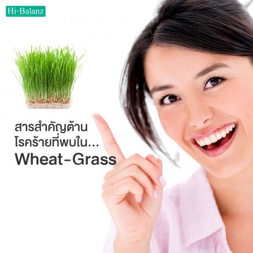 สารสำคัญต้านโรคร้ายที่พบใน Wheat grass