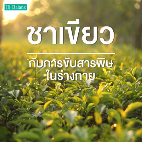 ไขความลับ!! สารสกัดชาเขียว (Green Tea Extract) ขับสารพิษในร่างกาย