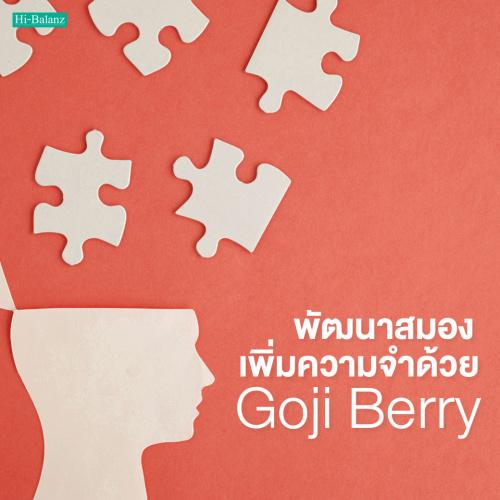 พัฒนาสมองเพิ่มความจำด้วยโกจิเบอร์รี่ (Goji Berry)
