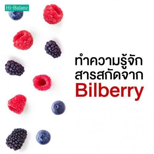 ทำความรู้จักกับ สารสกัดจากบิลเบอร์รี่ (Bilberry) กัน