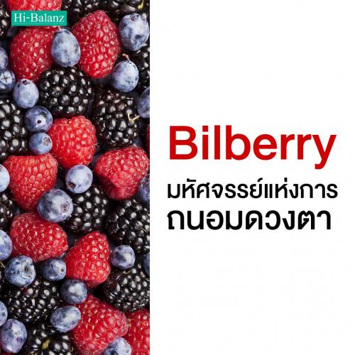 สารสกัดจากบิลเบอร์รี่ (Bilberry) มหัศจรรย์แห่งการถนอมดวงตา