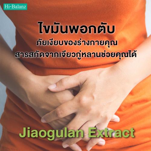 ไขมันพอกตับ ภัยเงียบของร่างกายคุณ สารสกัดจากเจียวกู่หลานช่วยคุณได้ (Jiaogulan Extract