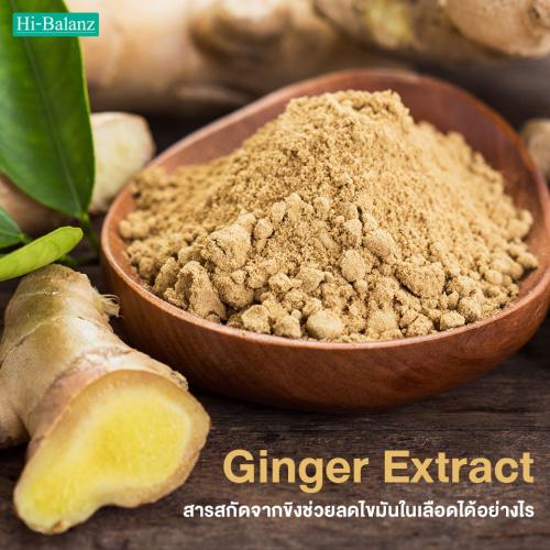 สารสกัดจากขิงช่วยลดไขมันในเลือดได้อย่างไร (Ginger Extract)