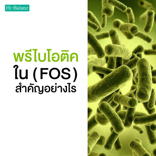 พรีไบโอติคใน Fructo Oligosaccharide สำคัญอย่างไร