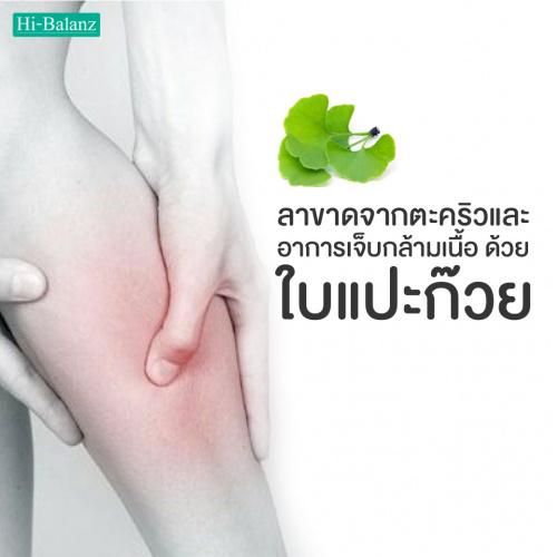 ลาขาดจากตะคริวและอาการเจ็บกล้ามเนื้อ ด้วยใบแปะก๊วย