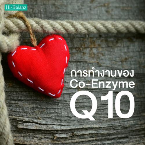 การทำงานของ โค-เอนไซม์ คิวเท็น (Co-Enzyme Q10) ที่มีผลต่อร่างกาย