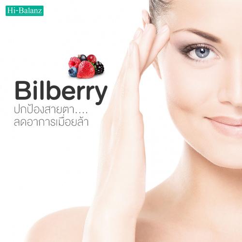 Bilberry ปกป้องสายตาลดอาการเมื่อยล้า