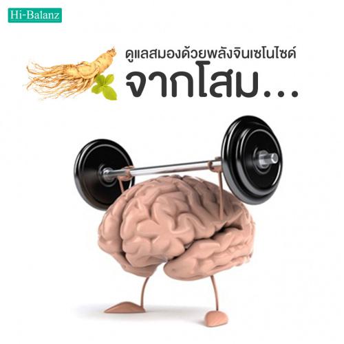 ดูแลสมองด้วยพลังจินเซโนไซด์จากโสม