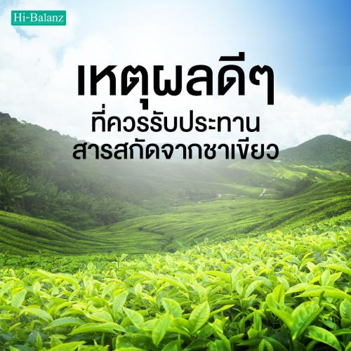เหตุผลดีๆ ที่ควรรับประทานสารสกัดจากชาเขียว