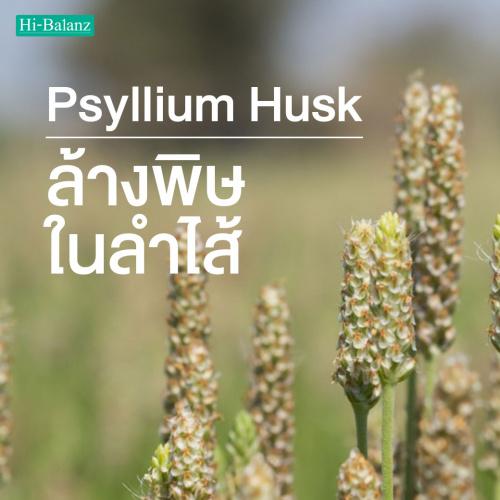 ไซเลียม ฮัสค์ (Psyllium Husk) กับการล้างพิษในลำไส้