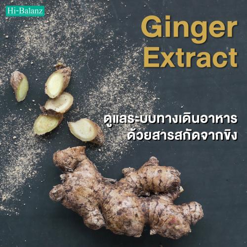 ดูแลระบบทางเดินอาหารด้วยสารสกัดจากขิง (Ginger Extract)