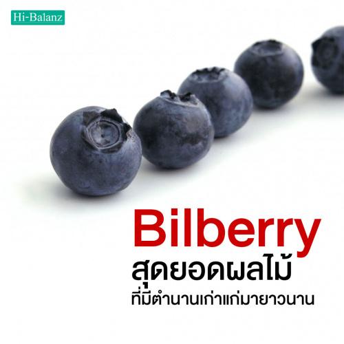 สารสกัดจากบิลเบอร์รี่ (Bilberry) สุดยอดผลไม้ที่มีตำนานเก่าแก่มายาวนาน