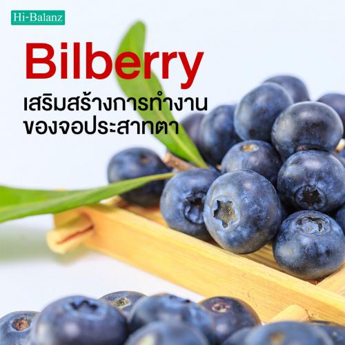 เสริมสร้างการทำงานของจอประสาทตา ดูแลด้วยสารสกัดจากบิลเบอร์รี่ (Bilberry Extract)