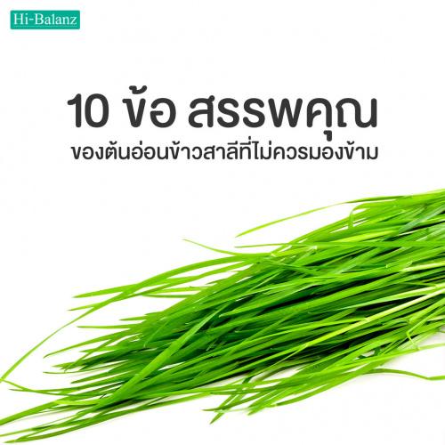10 ข้อ สรรพคุณของต้นอ่อนข้าวสาลีที่ไม่ควรมองข้าม