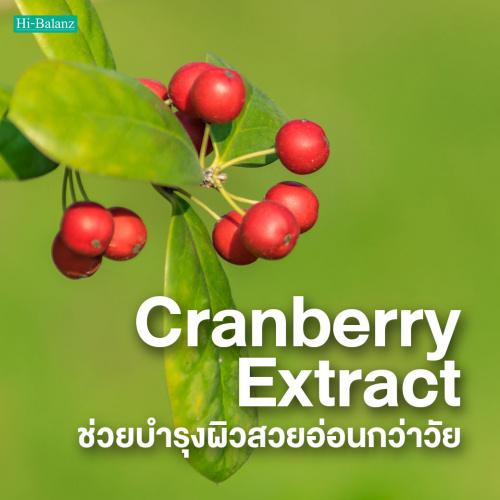 สารสกัดจากแครนเบอร์รี่ (Cranberry Extract) ช่วยบำรุงผิวสวยอ่อนกว่าวัย