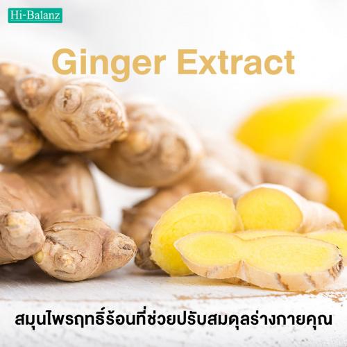 สารสกัดจากขิง (Ginger Extract) สมุนไพรฤทธิ์ร้อนที่ช่วยปรับสมดุลร่างกายคุณ