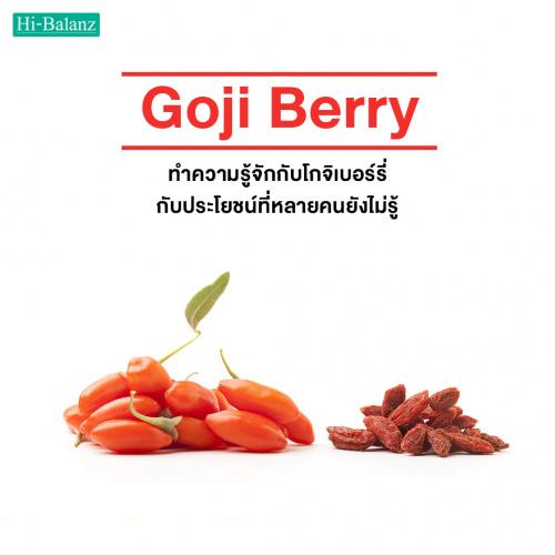 ทำความรู้จักกับโกจิเบอร์รี่ (Goji Berry) กับประโยชน์ที่หลายคนยังไม่รู้