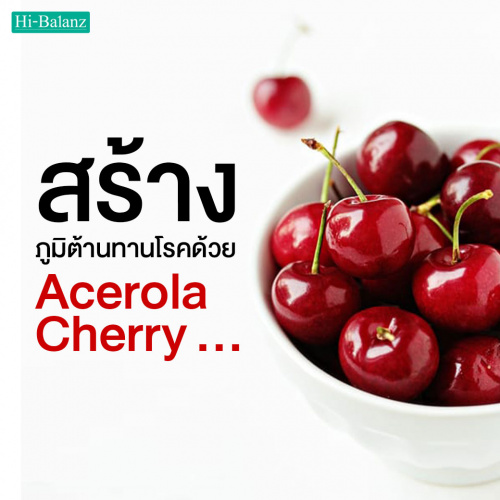 สร้างภูมิต้านทานโรคด้วยสารสกัดจากอะเซโรล่า เชอร์รี่ (Acerola Cherry)
