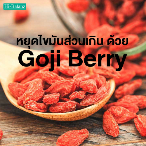 หยุดไขมันส่วนเกิน ด้วยสรรพคุณจากสารสกัดโกจิเบอร์รี่ (Goji Berry Extract)