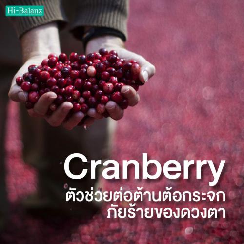 สารสกัดจากแครนเบอร์รี่ (Cranberry Extract) ตัวช่วยต่อต้านต้อกระจก ภัยร้ายของดวงตา