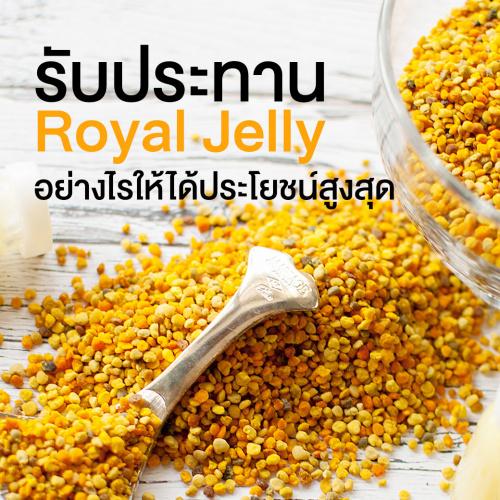 รับประทาน สารสกัดจากนมผึ้ง (Royal jelly) อย่างไรให้ได้ประโยชน์สูงสุด