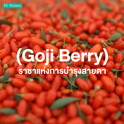 โกจิเบอร์รี่ (Goji Berry) ราชาแห่งการบำรุงสายตา
