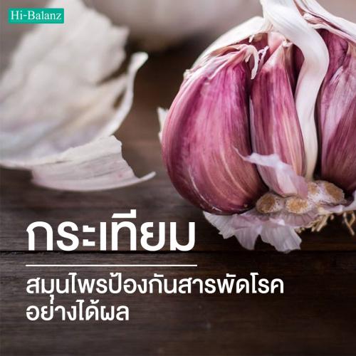 กระเทียม (Garlic Extract) บำบัด สมุนไพรป้องกันสารพัดโรคร้ายอย่างได้ผล