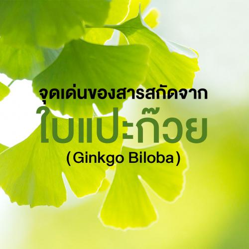 สารสำคัญที่พบในสารสกัดจากใบแปะก๊วย (Ginkgo Biloba) และผลของการรักษาโรค