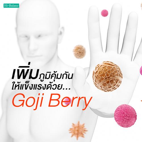 เพิ่มภูมิคุ้มกันให้แข็งแรงด้วยสารสกัดจากโกจิเบอร์รี่ (Goji Berry Extract)