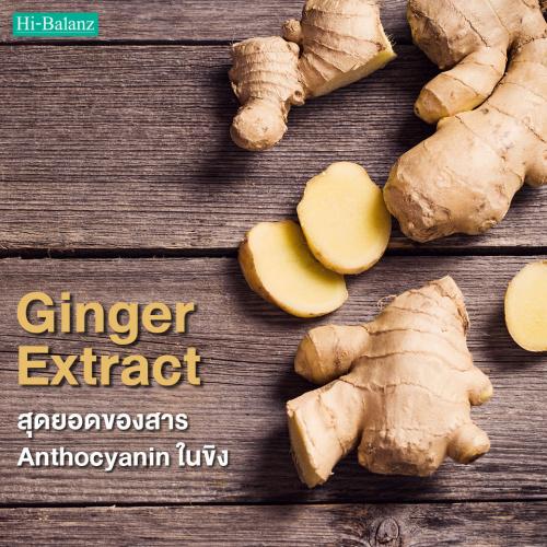 สุดยอดของสาร Anthocyanin ในขิง(Ginger Extract)