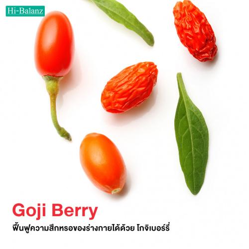 ฟื้นฟูความสึกหรอของร่างกายได้ด้วย สารสกัดจากโกจิเบอร์รี่ (Goji Berry Extract)