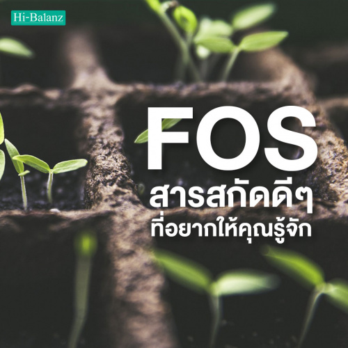 Fructo Oligosaccharide (FOS) สารสกัดดีๆที่อยากให้คุณรู้จัก