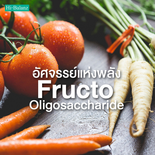 อัศจรรย์แห่งพลัง Fructo Oligosaccharide (FOS) ในอาหารเสริม