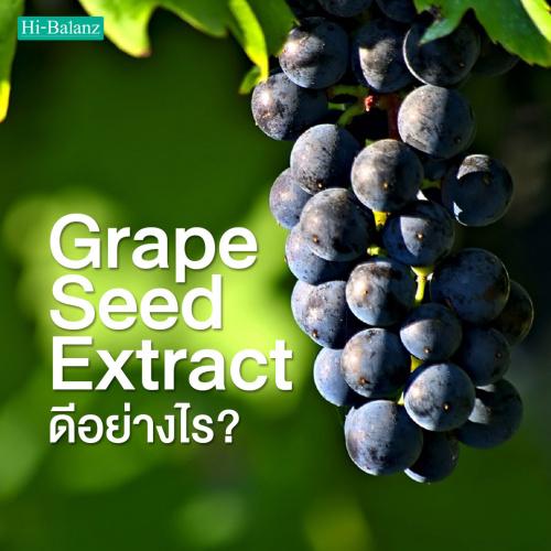 สารสกัดจากเมล็ดองุ่น(Grape Seed Extract )ดีอย่างไร?